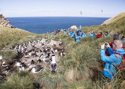 Hurtigruten: Einzigartige Tierparadiese im Südatlantik, Seereise 18 Tage ab € 6.531,-