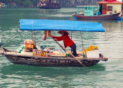 Chamäleon: Sapa – 16 Tage Wunderwelten-Reise Vietnam, ab € 3.699,-