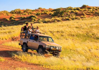 AF-NAM-A-Safari029