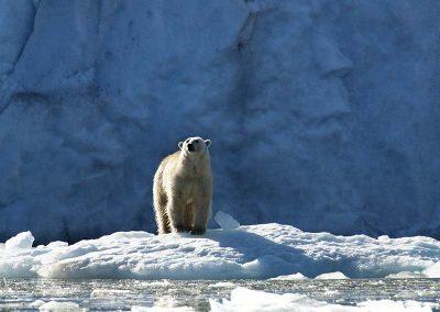 Spitsbergen-17