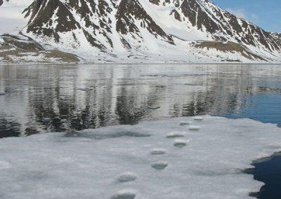 Spitzbergen-3-Oceanwide-PolarisTours